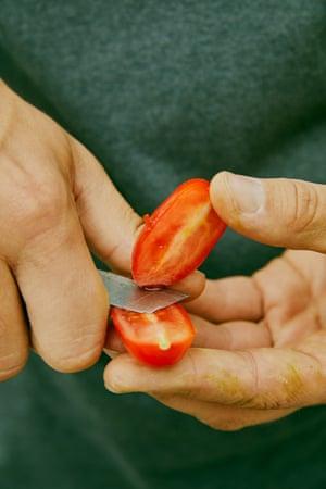 Tesco Tomate Emli Bendixen 504
