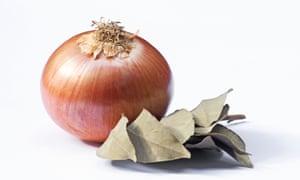 Cebolla y laurel