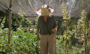 """Dale textura a tu comida"": elige productos de tu jardín."
