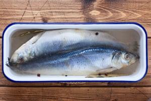 """El pescado empapado en salmuera salada ... es parte del proceso de """"envejecimiento""""."""