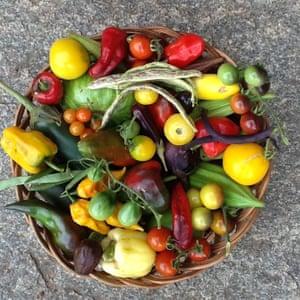 La rica variedad de productos de la granja de Prabhakar Rao en Bengalaru.
