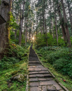 Puesta de sol, camino de piedra y árboles de Sugi o bosque de cedro japonés (Cryptomeria japonica) en el monte Haguro, una de las Tres Montañas Sagradas en la provincia de Dewa