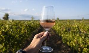 Mano sosteniendo una copa de vino rosado frente al viñedo