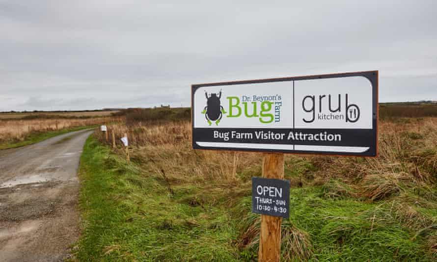 El signo de Bug Farm y Kitchen Grub, en las afueras de St Davids, Pembokeshire, Gales.